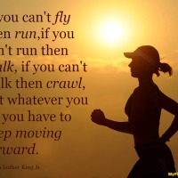 If you can't fly then run, if you can't run then w…